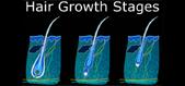 Understanding Hair Growth