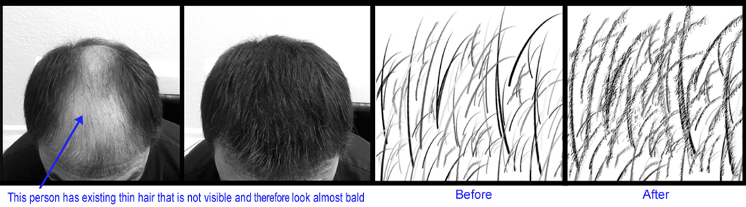 hair building fibers pictures before and  after
