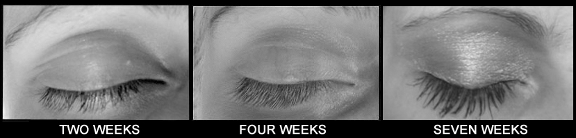 speedlash 7 weeks